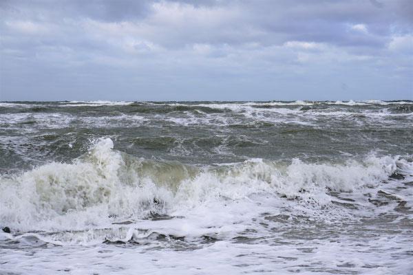 Philip Glass und das Meer