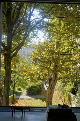 Zu Besuch bei Jutta von meinezeit-blog. Blick in den Garten...