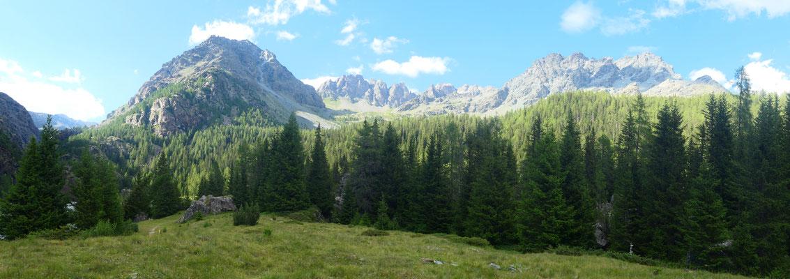 Auf der Alpe Campascio Richtung Norden