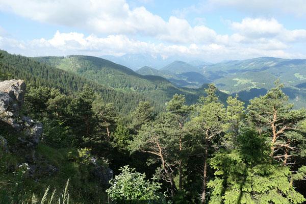 Blick richtung Schneeberg