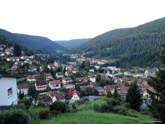 Bad Wildbad Blick nach Calmbach