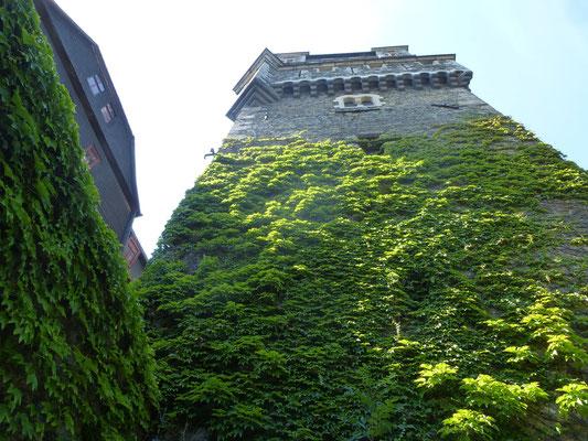 Burg Braunfels (JW)