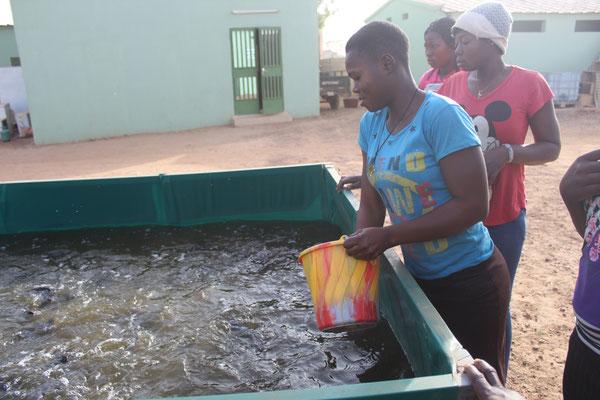 Diese junge Dame hat ebenfalls das Metier der Fischzucht in Kombination mit Landwirtschaft gewählt.