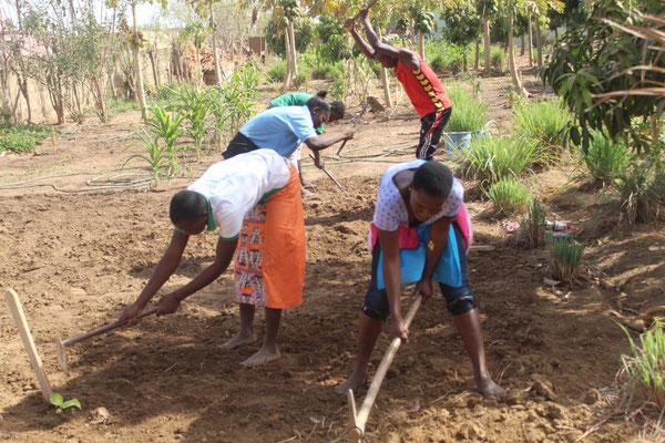 RAVI zeigt unseren Kandidaten, wie sie während dem ganzen Jahr erfolgreich Landwirtschaft betreiben können.