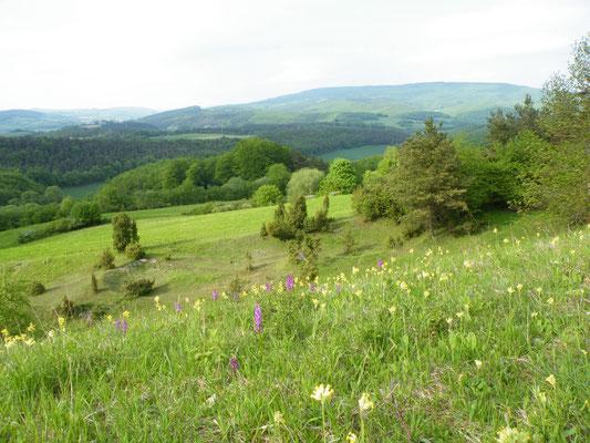Landschaft westlich des Hohen Meißner