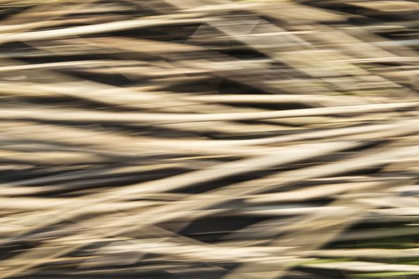 Abstrakte Fotografie minimalistische Minimalismus Mecklenburg Vorpommern Strand Ostsee Urlaub Kunst Print Fineart Felix Lachmann Heimatlicht ICM Zen