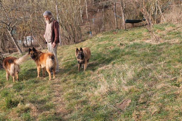 Bernhard mit den Hunden
