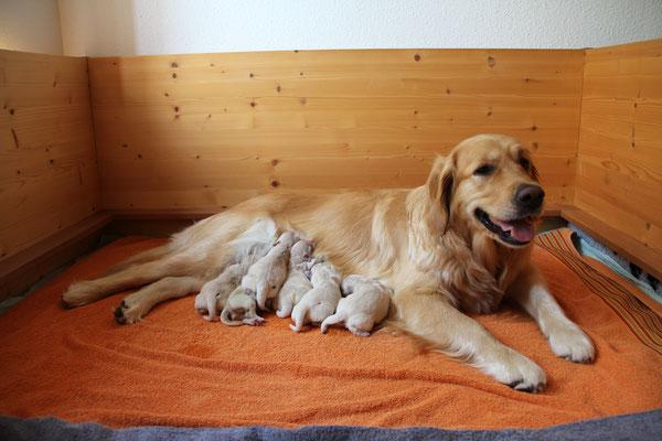 Ja , Easy du bist ein tolles Mami!