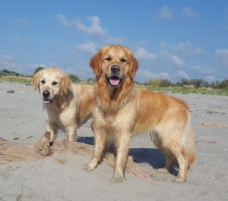 wir sind richtige Strandschönheiten...