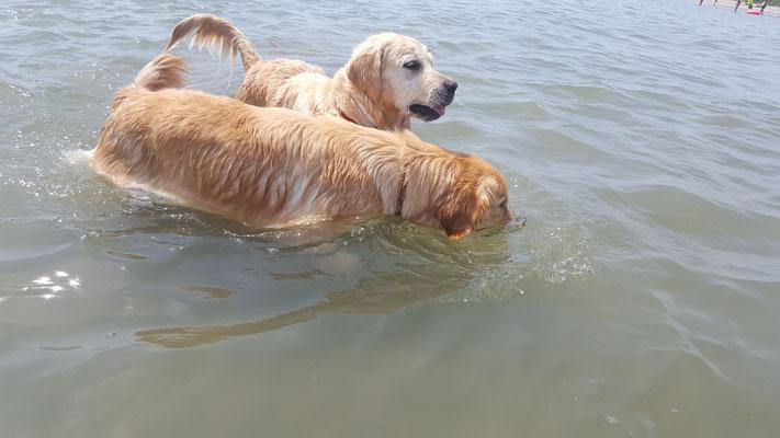 Am Mittag wenns heiss ist tümmeln wir so daher im Wasser