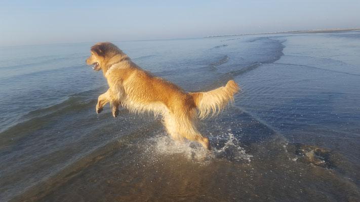 patsch und ab ins Meer...