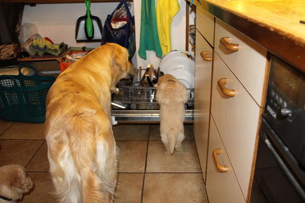 und sie macht dass super: Geschirr ist sauber hihi