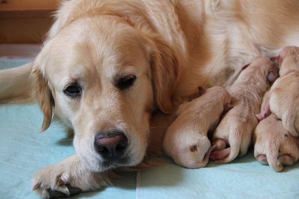 Lilly ist so ein liebes Mami!
