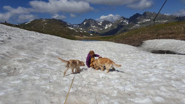 Sogar ein Schneefeld haben wir gefunden