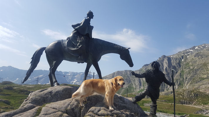 hier geht Easy mit Don Quichote und seinem Pferd auf Reisen....
