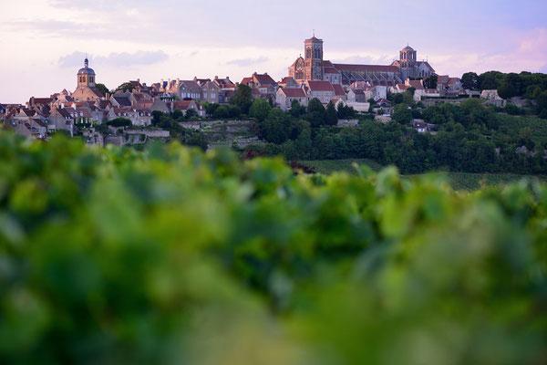 Vézélay in Burgund mit seiner beühmten Basilika Ste Madelaine, aus den Weinbergen fotografiert