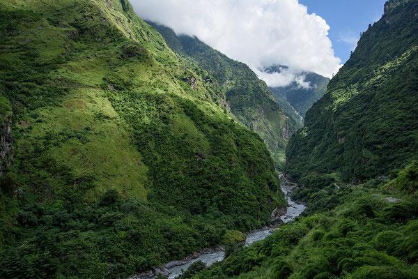 Zwischen Tal und Dharapani