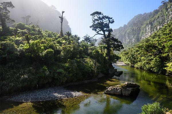 Flusslandschaft an der Westküste der Südinsel