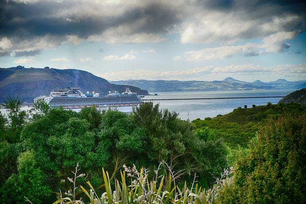 Penguin Place mit fantastischer Aussicht auf die Bucht