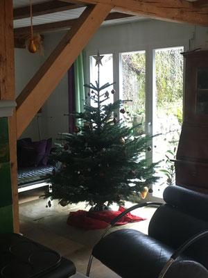 Weihnachtsbaum - Tannenbaumplantage Wälchli Weihnachtsbäume Wäckerschwend