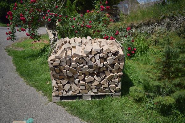 Brennholz aus unserem Wald - Tannenbaumplantage Wälchli Weihnachtsbäume Wäckerschwend