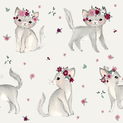 Katze Daisy
