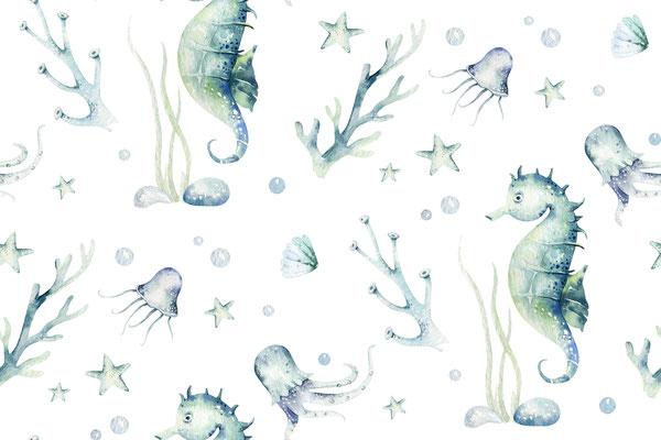 Seepferchen Ilias