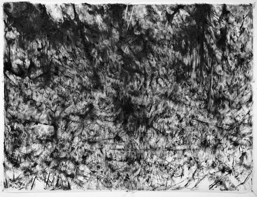 Pulsion / fusain sur papier / 150x200cm / 2017