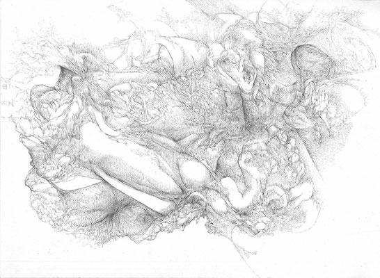 Forteresses II/mine de plomb sur papier/29,7x42cm/2016/collection particulière