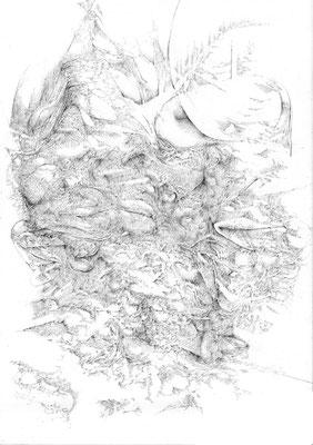 Sans titre/mine de plomb sur papier/42x29,7cm/2016