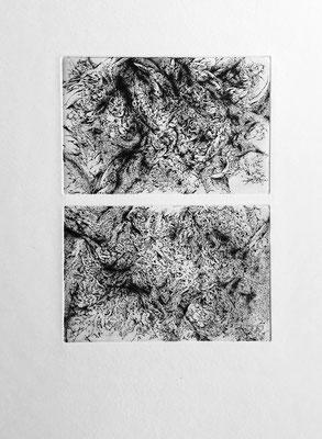 Sans titre-Dyptique / eau forte sur zinc / 2 x 10 x 15 cm / 2018