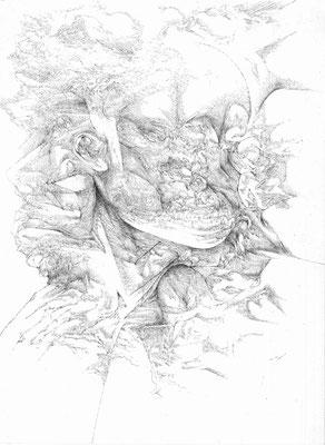 Forteresses I/mine de plomb sur papier/42x29,7cm/2016/collection particulière