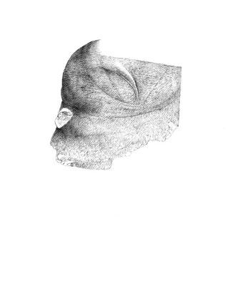 Nunc#03/mine de plomb sur papier/21x25cm/2017