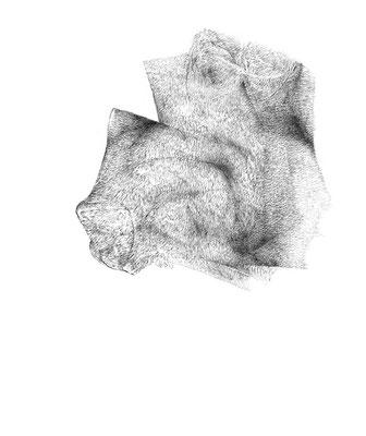 Nunc#09/mine de plomb sur papier/21x25cm/2017