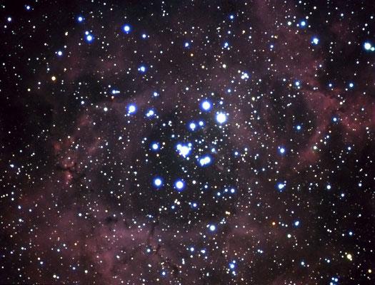 NGC2238-Takahashi FS60-Starlight Xpress MX716-16-02-2009-Rocchi Gianni