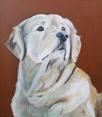 Max, Acryl auf Baumwollgewebe, 60 x 70 cm, 2013
