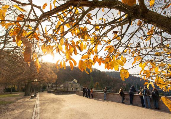 360|365 24.11.2016 - Heidelberger Schloss
