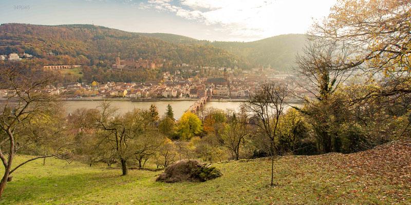 349|365 13.11.2016 - Blick vom Philosophenweg auf die Heidelberger Altstadt