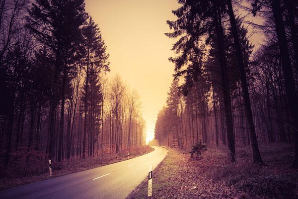 67|365 05.02.2016 - Gaiberger Weg