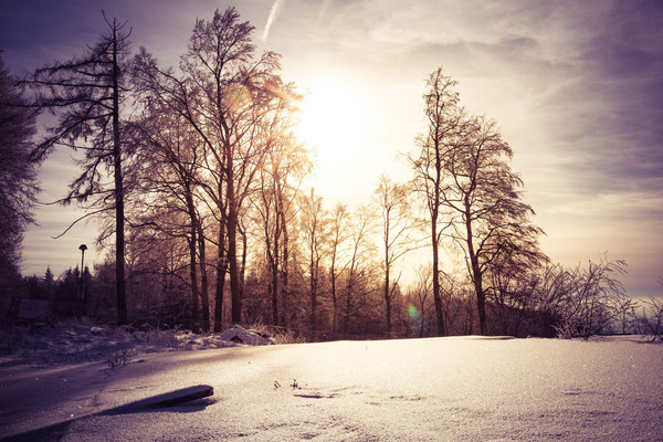 49|365 18.01.2016 - Schnee am Königstuhl