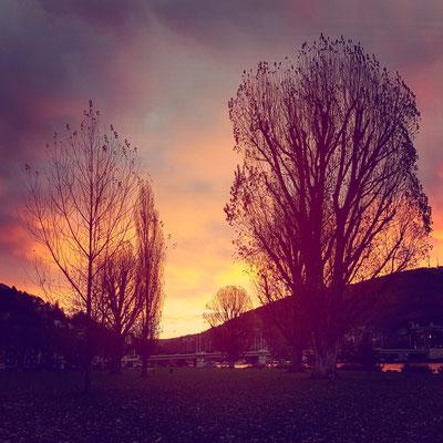 357|365 21.11.2016 - Guten Morgen Heidelberg