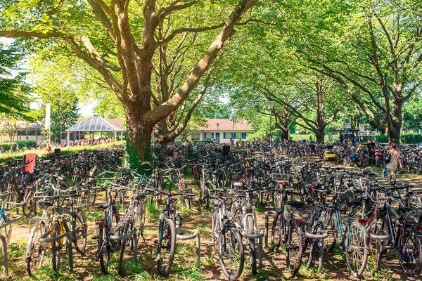 233|365 20.07.2016 - Fahrräder am Tiergarten-Schwimmbad