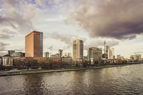 Die Frankfurter Skyline vom Mainufer
