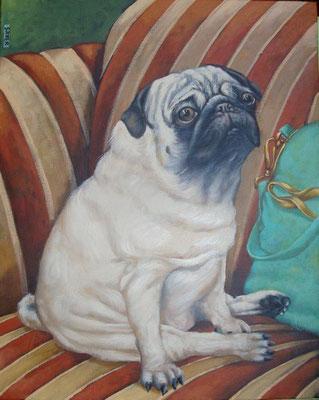 Gemälde 432  Taschenhund 4  Acryl auf Leinwand,2013,   40 x 50 cm
