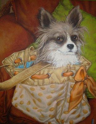 Gemälde 429  ,Taschenhund 1  Acryl auf Leinwand,2013,   40 x 50 cm