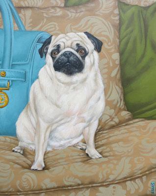 Gemälde 537, Taschenhund Vol 5 ,Acryl auf Leinwand, 2016, 40 x 50 cm