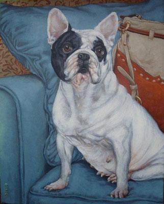 Gemälde 430,  Taschenhund 2  Acryl auf Leinwand,2013,   40 x 50 cm