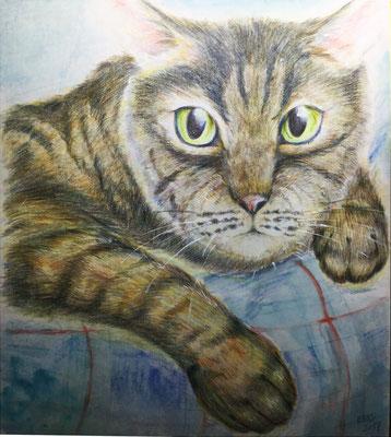 色鉛筆画3