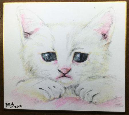 色鉛筆画2