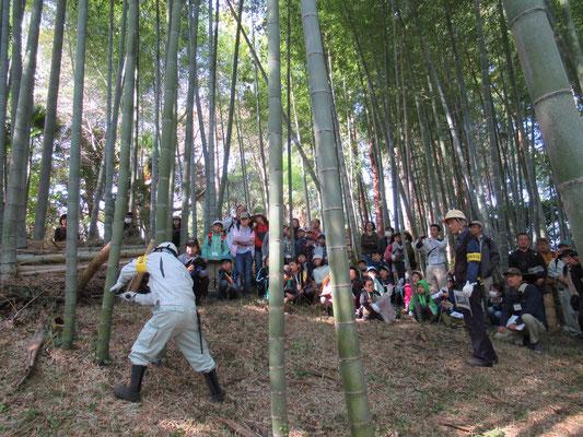 竹の伐採の様子。手際よく竹を倒し、葉を落としました。